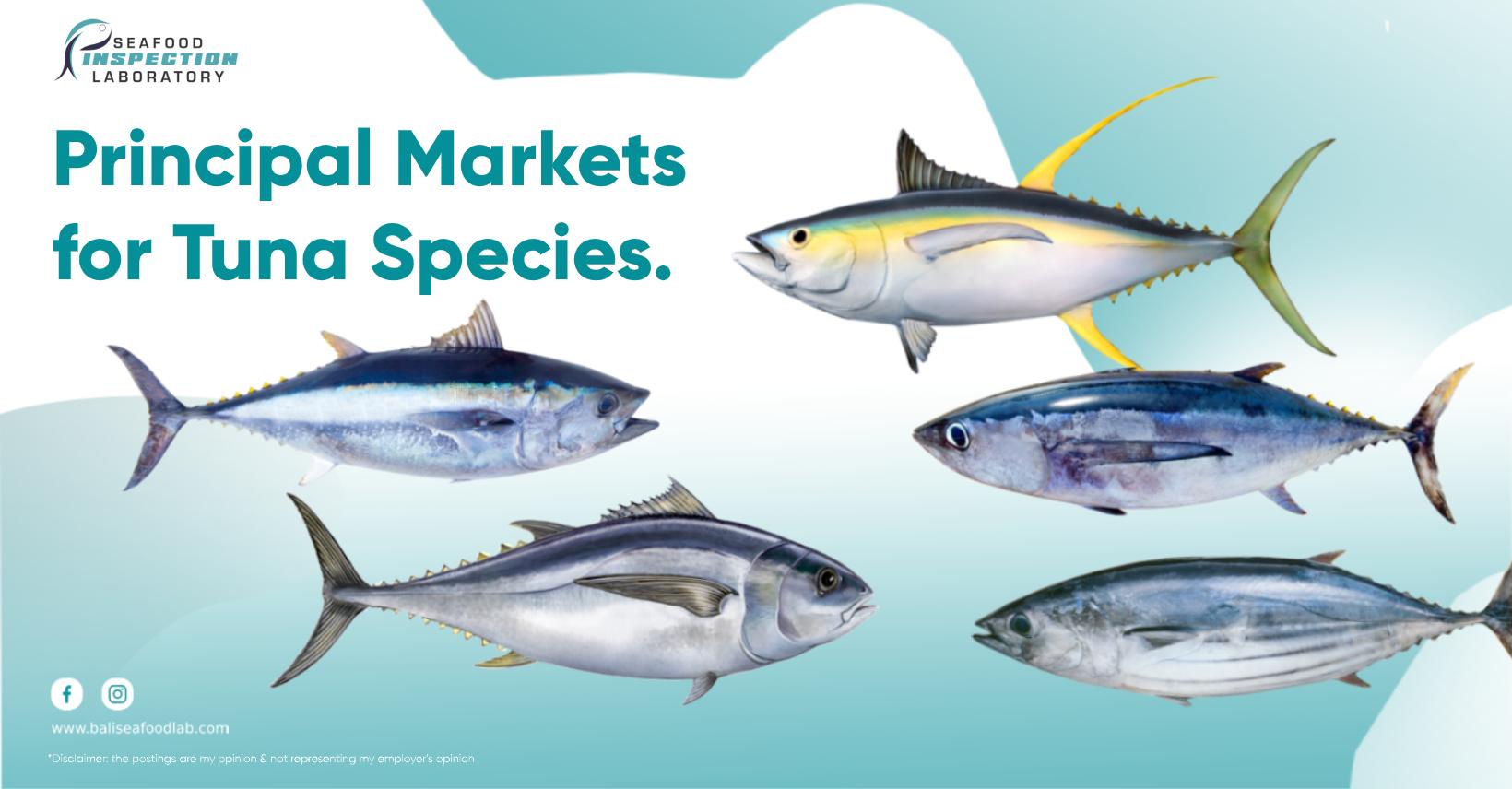 Tuna Species