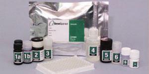 GeneQuence-salmonella